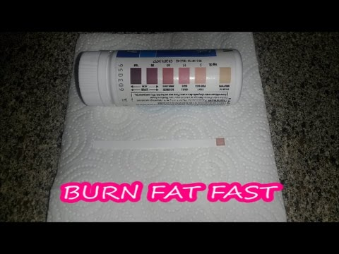 Are You Burning Fat? Ketosis?